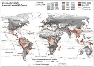 Artenvielfalt in der Welt