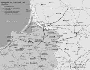 Wolfskinder in Ostpreußen 1945