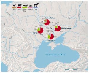 Osteuropa Viehbestand
